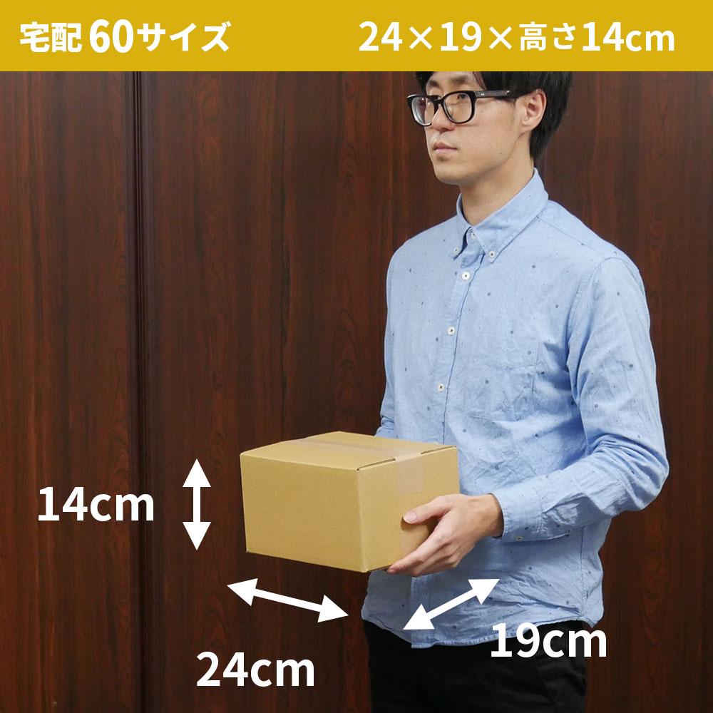 【宅配60サイズ】 定番ダンボール箱 (FD08)