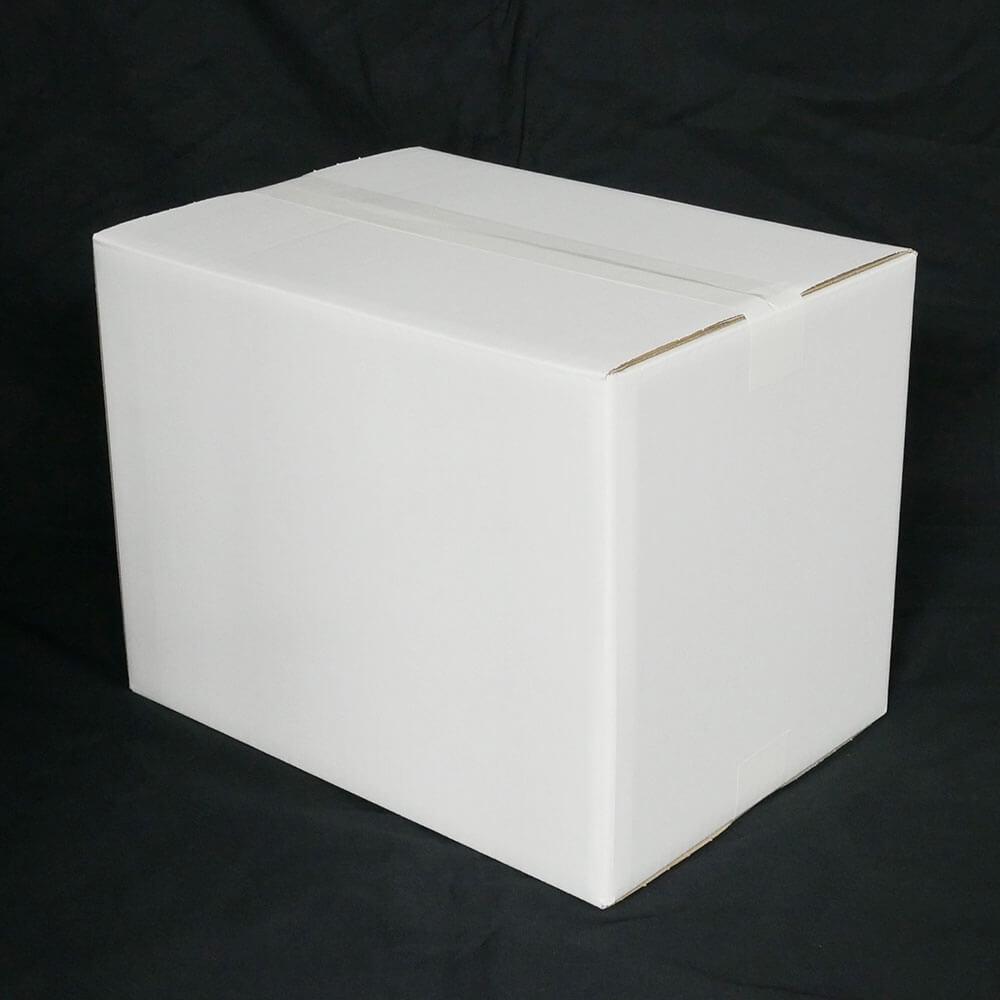 【宅配100サイズ】 白ダンボール箱 (FW06)