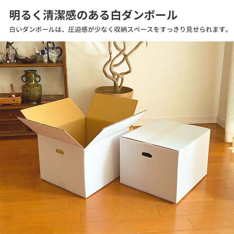 【宅配100サイズ / 取っ手穴付】 白ダンボール箱 (FW06b)