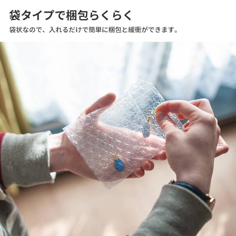 えあるん袋 Sサイズ [ 100×100+30mm ] (IF01)